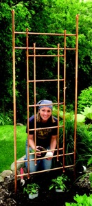 Trellis, Copper