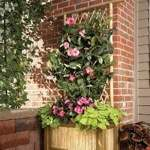 Bamboo Planter with Trellis