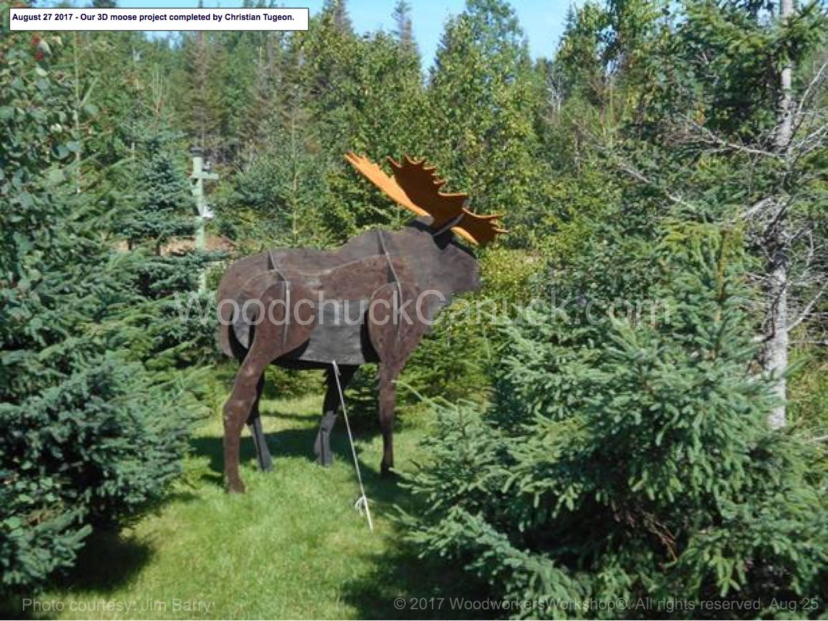 05-WC-0419 - 3D Moose Near Life Size Yard Art Woodworking Pattern