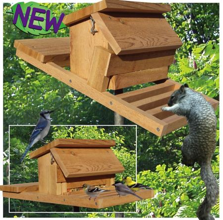 How To Build Bird Feeders Squirrel Proof