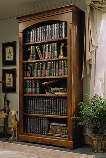 Towering Tomes Bookcase Woodworking Plan.