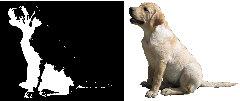 Sitting Labrador Retriever Scroll Saw Pattern