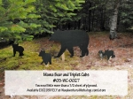 05-WC-0027 - Mama Bear and Triplet Cubs Full Size Yard Art Patterns