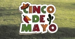 05-WC-0054 - Cinco De Mayo Yard Art Woodworking Pattern