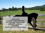 05-WC-0385 - Equestrian Silhouette Yard Art Woodworking Pattern