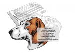 Deutsche Bracke Dog Intarsia or Yard Art Woodworking Pattern