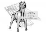 Dogo Argentino Intarsia or Yard Art Woodworking Pattern