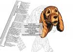 English Cocker Spaniel Dog Intarsia or Yard Art Woodworking Pattern