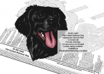 Flat Coat Retriever Dog Intarsia or Yard Art Woodworking Pattern