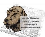 Griffon Fauve de Bretagne Dog Intarsia or Yard Art Woodworking Pattern