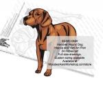 Hanover Hound Dog Intarsia or Yard Art Woodworking Pattern.