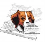 Kooikerhondje Dog Intarsia or Yard Art Woodworking Plan Kanni