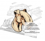 fee plans woodworking resource from WoodworkersWorkshop® Online Store - Lakeland Terrier dogs,pets,animals,dog breeds,intarsia,yard art,painting wood crafts,scrollsawing patterns,drawings,plywood,plywoodworking plans,woodworkers projects,workshop blueprints