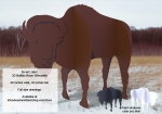3D Buffalo Bison Silhouette Yard Art Woodworking Pattern