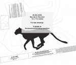 05-WC-0656 - Big Cat on the Prowl Silhouette Yard Art Jig Saw Woodworking Pattern