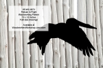Pelican in Flight Yard Art Woodworking Pattern
