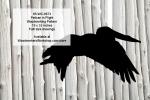 Pelican in Flight Yard Art Woodworking Pattern
