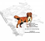 Nova Scotia Duck Tolling Retriever or Yard Art Woodworking Pattern woodworking plan