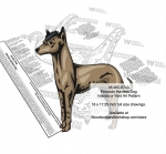 Peruvian Hairless Dog Scrollsaw Intarsia Woodworking Pattern woodworking plan