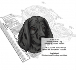 Picardy Spaniel Dog Scrollsaw Intarsia Woodworking Pattern woodworking plan