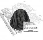 Picardy Spaniel Dog Scrollsaw Intarsia Woodworking Pattern