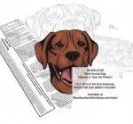 Plott Hound Dog Scrollsaw Intarsia or Yard Art Woodworking Pattern