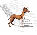Podenco Canario Dog Scrollsaw Intarsia or Yard Art Woodworking Pattern