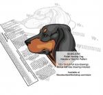 Polish Hunting Dog Scrollsaw Intarsia or Yard Art Woodworking Pattern