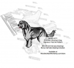 fee plans woodworking resource from WoodworkersWorkshop® Online Store - Pyrenean Shepherd Dogs,pets,animals,dogs,breeds,instarsia,yard art,painting wood crafts,scrollsawing patterns,drawings,plywood,plywoodworking plans,woodworkers projects,workshop blueprints