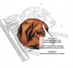 Rafeiro do Alentejo Dog Intarsia or Yard Art Woodworking Pattern
