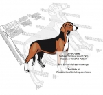 Serbian Tricolour Hound Intarsia Yard Art Woodworking Plan