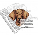 Slovak Rough Haired Pointer Dog Intarsia Yard Art Woodworking Plan