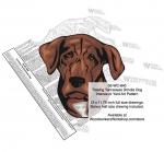 Treeing Tennessee Brindle Dog Intarsia Yard Art Woodworking Plan