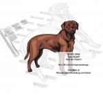 Tosa Dog Intarsia Yard Art Woodworking Plan