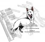 White Shepherd Dog Intarsia Yard Art Woodworking Plan