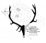 05-WC-1240 - Antler Rack No.6 Yard Art Woodworking Pattern