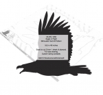 05-WC-1259 - Eagle in Flight Silhouette Yard Art Woodworking Pattern