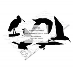 05-WC-1280 - Birds Group of Silhouettes Yard Art Woodworking Pattern
