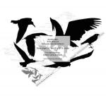 Birds Group of Silhouettes Yard Art Woodworking Pattern