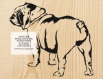 Bulldog Looking Back Scrollsaw Woodworking Pattern