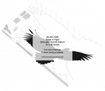 05-WC-1323 - Eagle Silhouette Yard Art Woodworking Pattern
