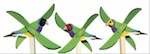 Tropical Finch Whirligig Woodworking Plan woodworking plan