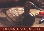 Olden Days Duck Decoy Woodworking Plan