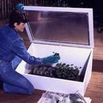 Cold Frame Woodworking Plan, dp-00166,cold frame,seedling,plants,outdoors,gardening,fee woodworking plans,projects,patterns,blueprints,build,construction,how to,diy,do-it-yourself
