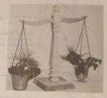 Balance Planter Vintage Woodworking Plan