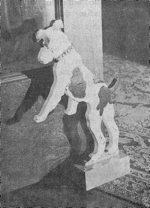 Animal Shields for Garden Lighting Vintage Woodworking Plan